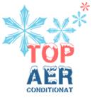 logo-topaer2